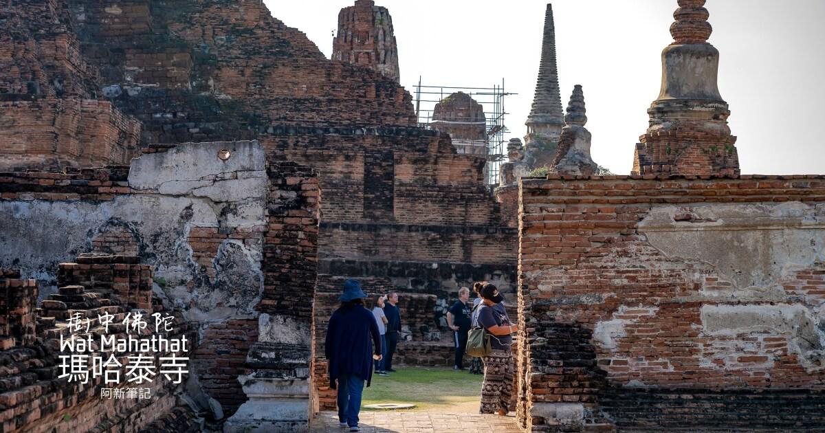 Wat Mahathat,大城府遺址,大城樹中佛陀,樹中佛陀,泰國大城景點,泰國旅遊,泰國樹中佛陀,瑪哈泰寺,瑪哈泰寺Wat Mahathat @Q毛阿偉